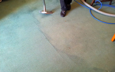 Inside Tips For Hiring a Professional Carpet Cleaner Near Me